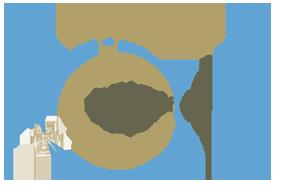 Stemwijze Logo